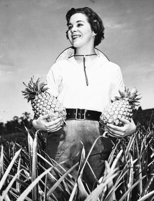 Bulgarian pineapple farmer, 1957